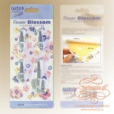 Flower Blossom Plunger cutter -Set of 4